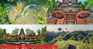Beberapa Wisata di Ubud yang Gratis